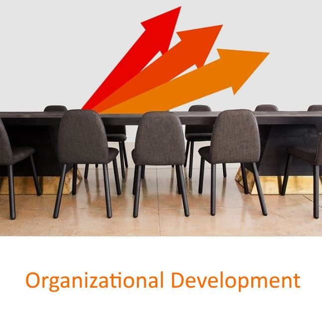 Organizational Development SIG